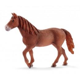 Schleich Konie - Klacz rasy Morgan - 13870