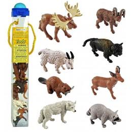 SAFARI LTD 697004 Zwierzęta w tubie - Zwierzaki z Ameryki Północnej