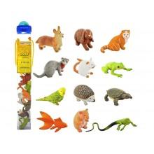SAFARI LTD 681504 Zwierzęta w tubie - Zwierzaki domowe