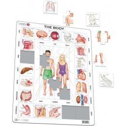 Larsen - Układanka Moje ciało - Puzzle 27017