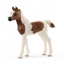 Schleich Konie - Figurka Źrebię rasy Pintabian - 13839