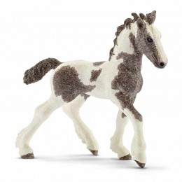 Schleich Konie - Źrebię rasy Tinker - 13774