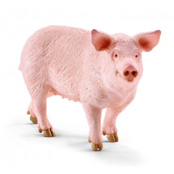 Schleich - Figurka Świnia - 13782