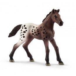 Schleich Konie - Figurka Źrebię Rasy Appaloosa - 13862