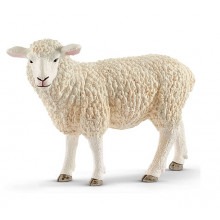 Schleich - Figurka Owca - 13882