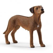 Schleich - Figurka pies rasy Rhodesian Ridgeback - 13895