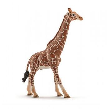 Schleich - Figurka Samiec żyrafy - 14749