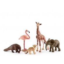 Schleich - Wild Life - Zestaw 5 figurek - 42388