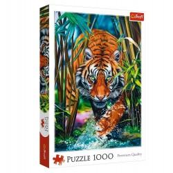 Trefl – Puzzle 1000 elementów – Drapieżny tygrys – 10528