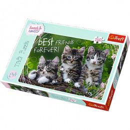 Trefl - Puzzle Sweet & Lovely Kocia Przyjaźń 260 el. - 13215