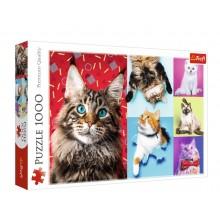 Trefl – Puzzle 1000 elementów – Wesołe koty – 10591