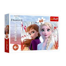 Trefl - Puzzle 60 el. Frozen 2 - Zaczarowany świat Anny i Elsy - 17333