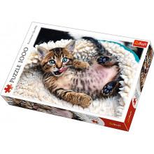 Trefl 10448 Puzzle 1000el. Wesoły kotek